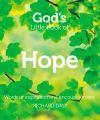 Книга God's Little Book of Hope автора Richard Daly