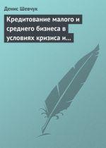 скачать книгу Кредитование малого и среднего бизнеса в условиях кризиса и финансовой нестабильности автора Денис Шевчук
