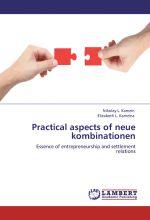 скачать книгу Practical aspects of neue kombinationen. Essence of entrepreneurship and settlement relations автора Николай Камзин