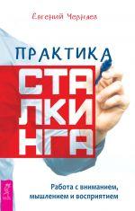 скачать книгу Практика сталкинга. Работа с вниманием, мышлением и восприятием автора Евгений Черняев