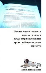 скачать книгу Распыление стоимости предмета залога среди аффилированных кредитной организации структур автора Николай Камзин