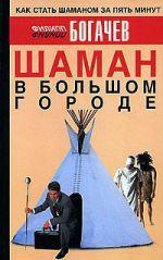 скачать книгу Шаман в большом городе автора Филипп Богачев