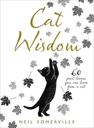 обложка книги Cat Wisdom: 60 great lessons you can learn from a cat автора Neil Somerville