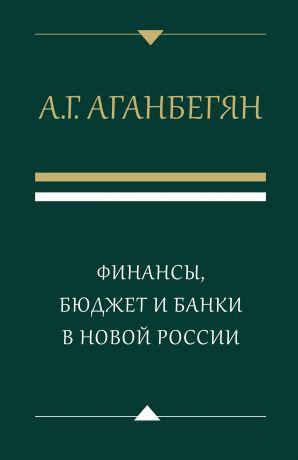 обложка книги Финансы, бюджет и банки в новой России автора Абел Аганбегян