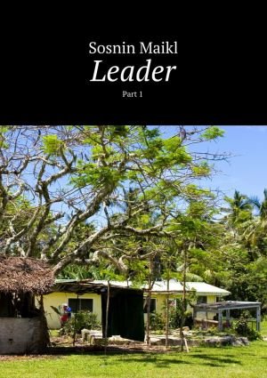 обложка книги Leader. Part 1 автора Maikl Sosnin